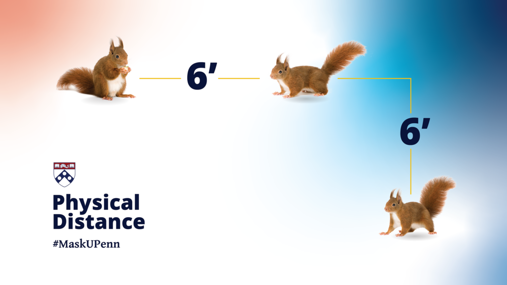 Physical Distance represented by squirrels six feet apart